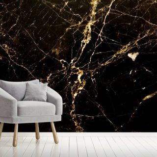 Black and Gold Smooth Wallpaper Wall Murals