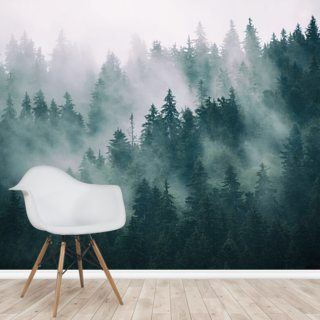 Smokey Misted Forest Wallpaper Wall Murals