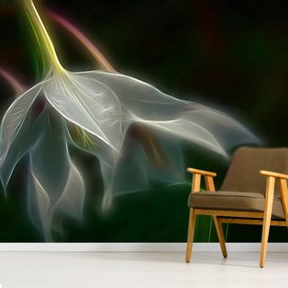 Light Lily Rain Wallpaper Wall Murals
