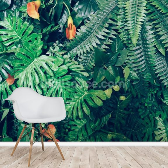 Exotic Jungle Wallpaper wall mural room setting