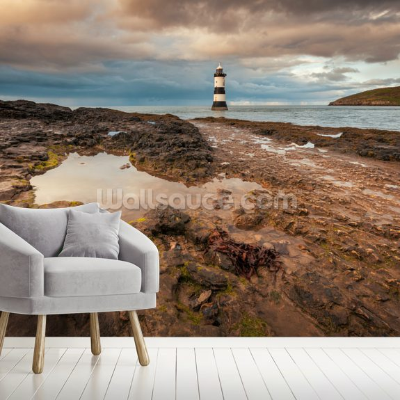 Penmon & Puffin Island wallpaper mural room setting