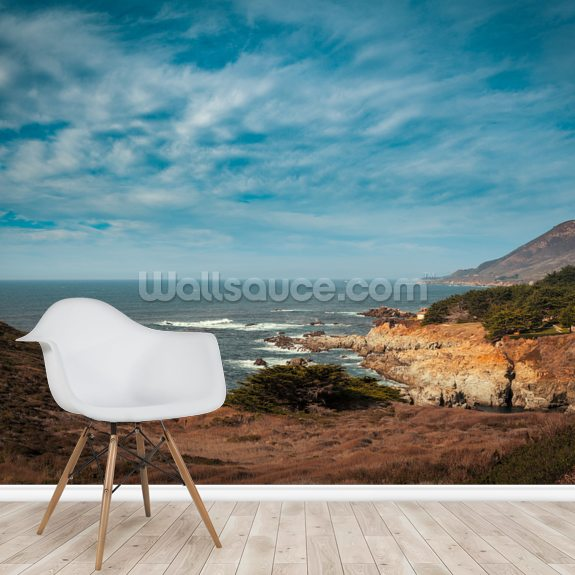 Pacific Highway Views wall mural room setting