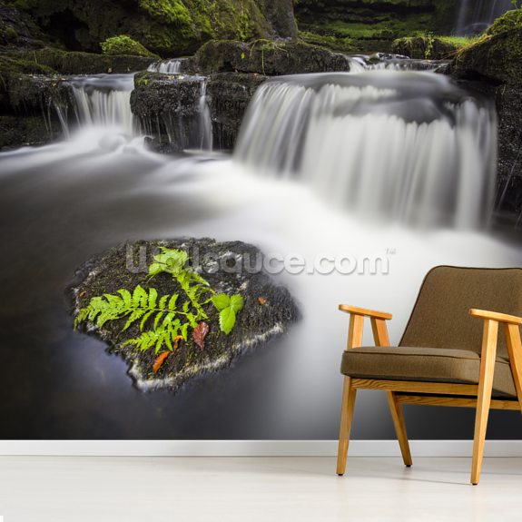 Scaleber Force Yorkshire wall mural room setting