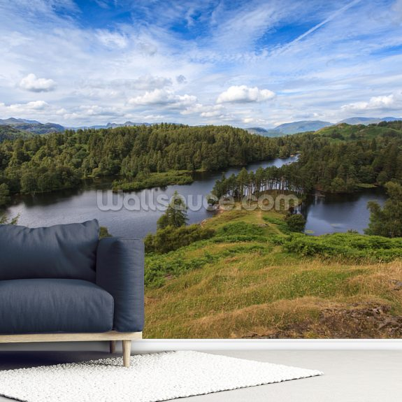 Tarn Hows Views wall mural room setting