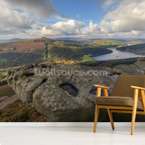 Bamford Edge Views mural wallpaper room setting