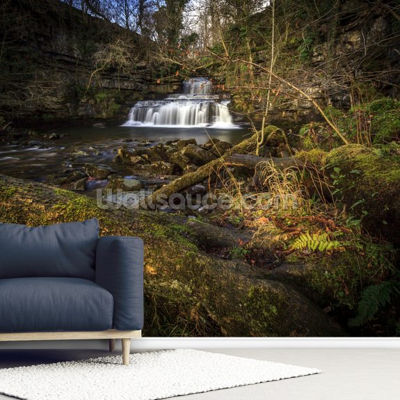 Cotter Force Yorkshire wallpaper mural room setting