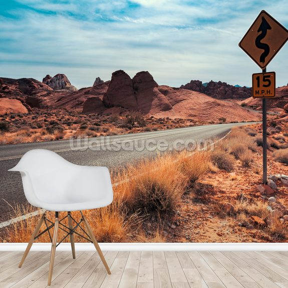 Valley of Fire Road Sign mural wallpaper room setting