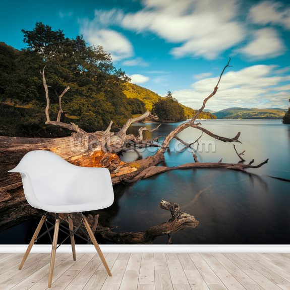 Fallen Tree Lake Windermere wall mural room setting