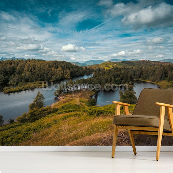 Tarn Hows Vista mural wallpaper room setting