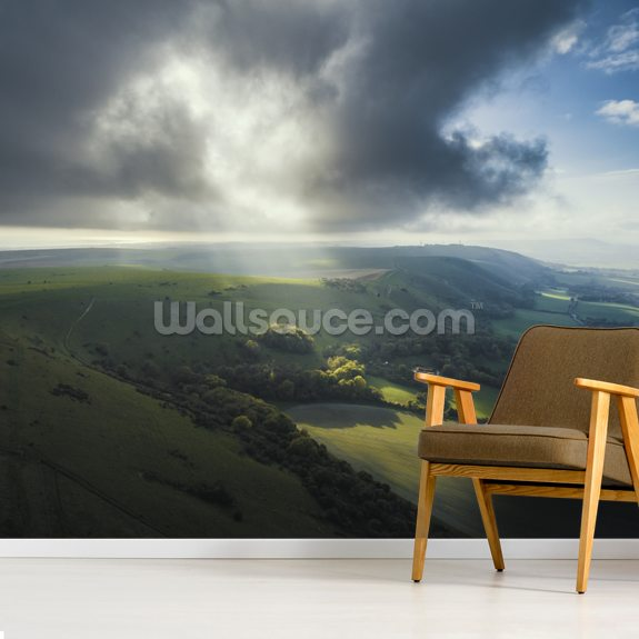 Devils Dyke Brighton wall mural room setting