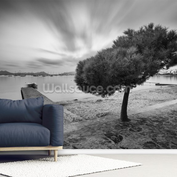 Pine Walk Majorca mural wallpaper room setting