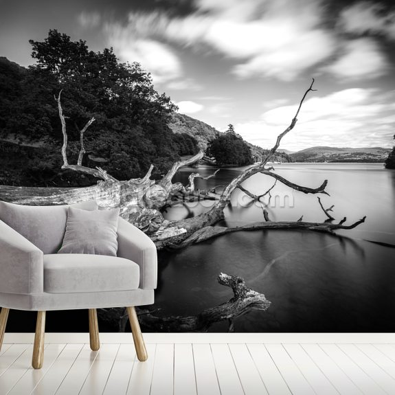 Lake Windermere wall mural room setting