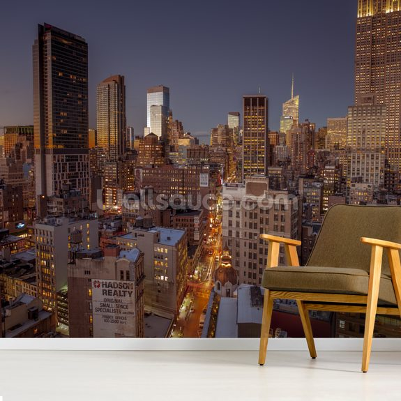 Lower Manhattan wall mural room setting