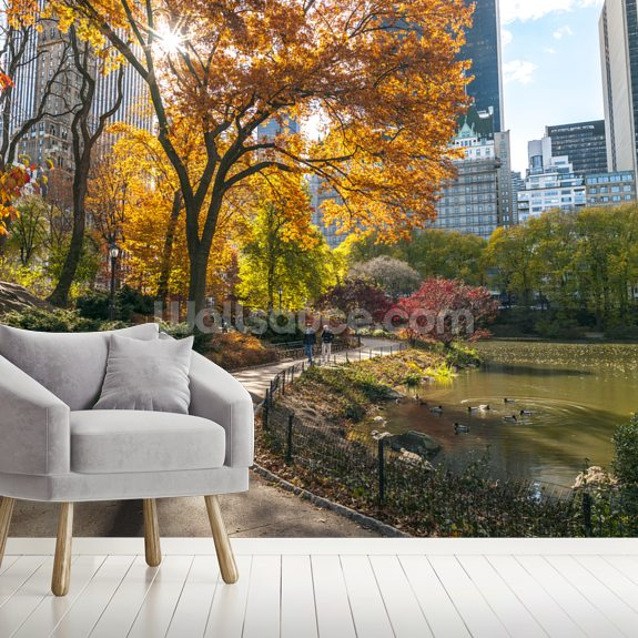 Pathway Through Central Park in Autumn mural wallpaper room setting