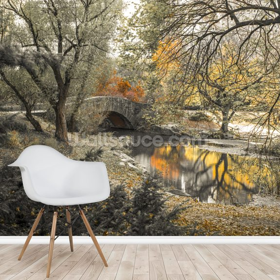 Central Park Stream wall mural room setting