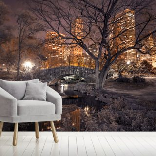 Cental Park at Night Wallpaper Wall Murals