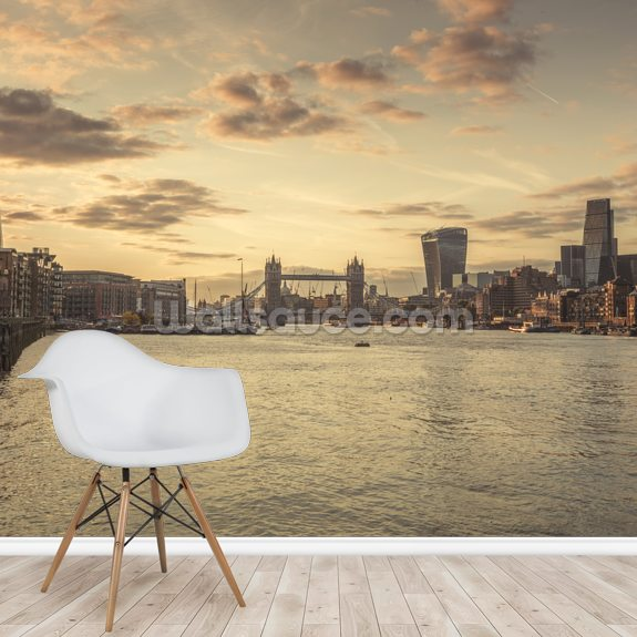River Thames and London Skyline mural wallpaper room setting