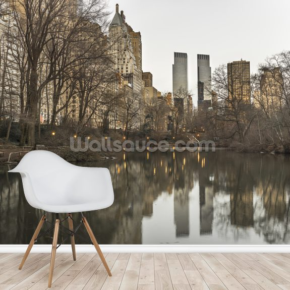 Central park with Manhattan Skyline wall mural room setting
