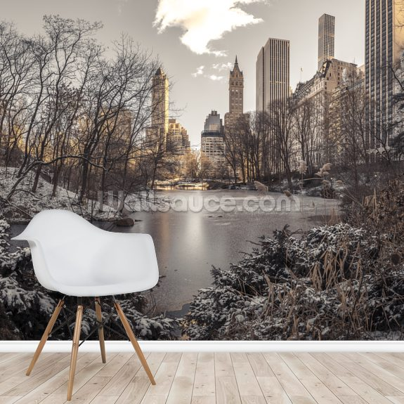 Winter Dawn in Central Park wallpaper mural room setting