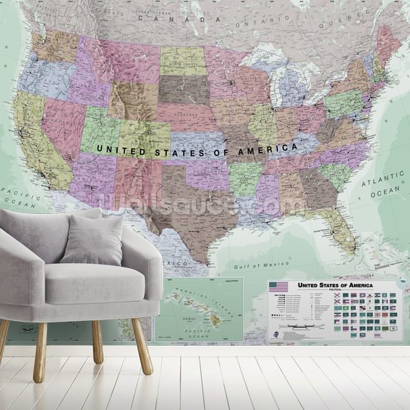 USA Political Map Neutral Colours wall mural room setting