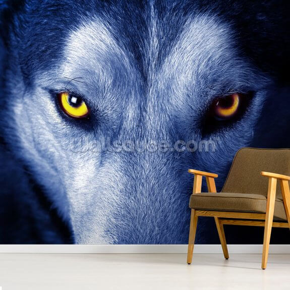Blue Wolf Wallpaper Wallsauce Ae
