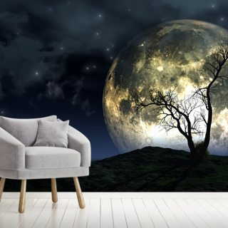 Tree and Moon Background
