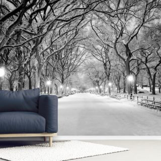 Central Park Covered in Snow Wallpaper Wall Murals