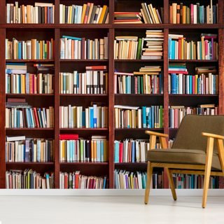 Bookcase Wallpaper Wall Murals