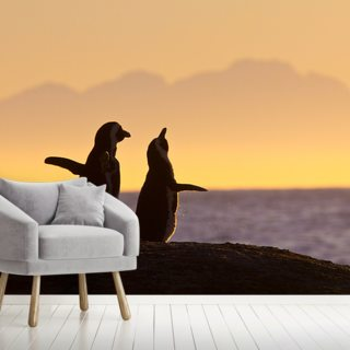 Penguin Couple at Sunset