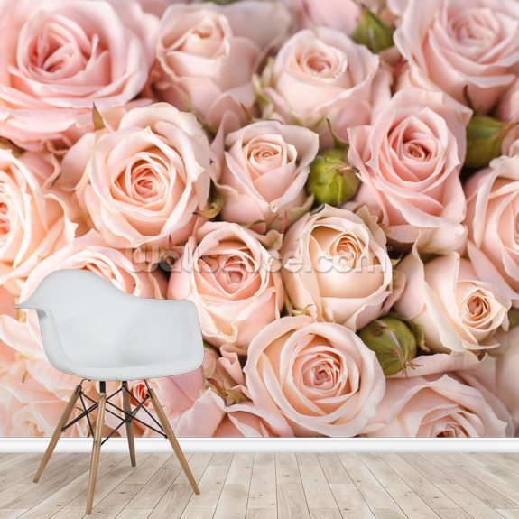 Bright Pink Roses mural wallpaper room setting