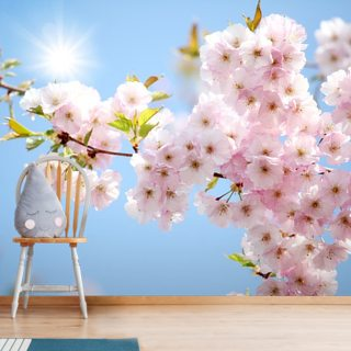 Sunlit Blossom Wallpaper Wall Murals