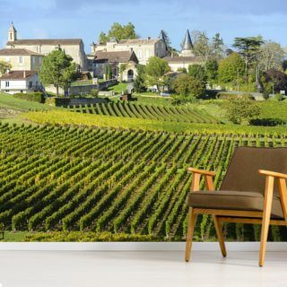 Saint Emilion, Bordeaux Vineyards