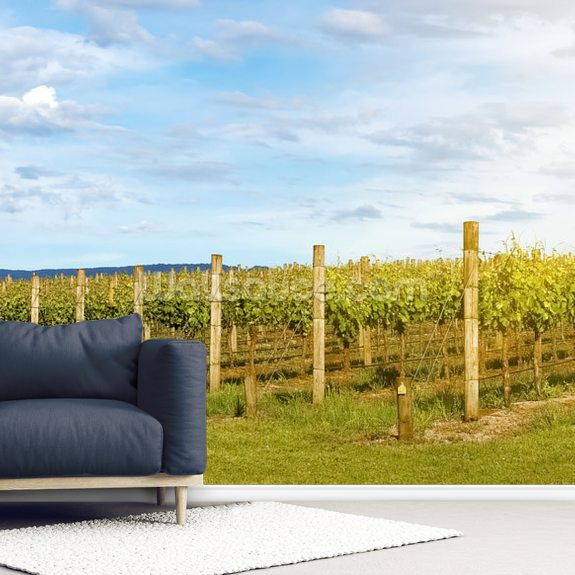 Yarra Valley Vineyards wallpaper mural room setting