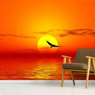 Red Sunset & Bird