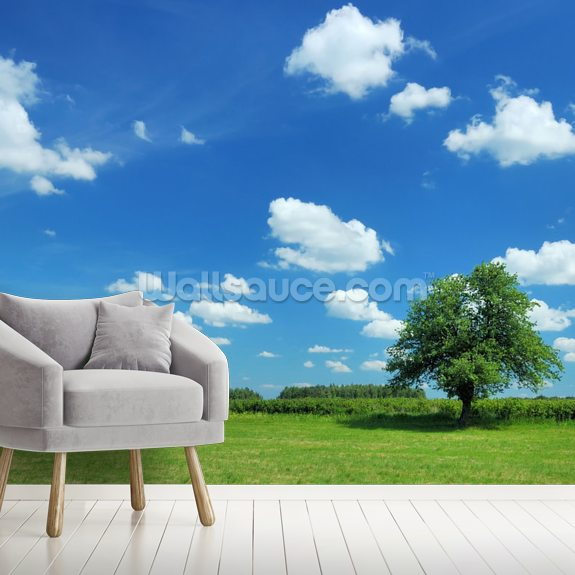 Summer Landscape mural wallpaper room setting