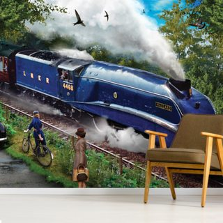 Mallard Wallpaper Wall Murals