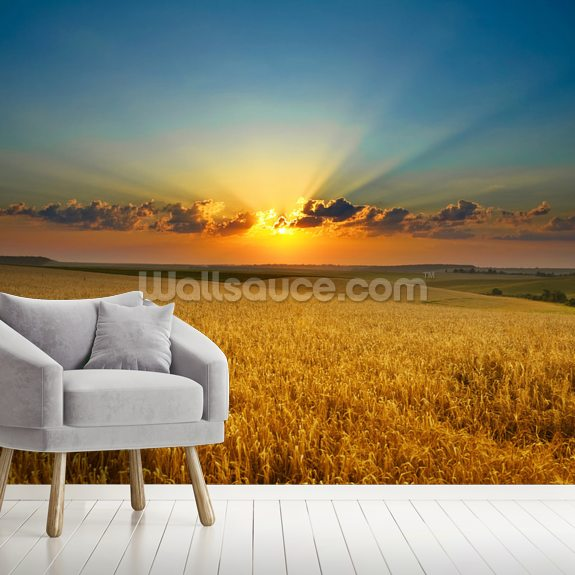 Golden Field wall mural room setting