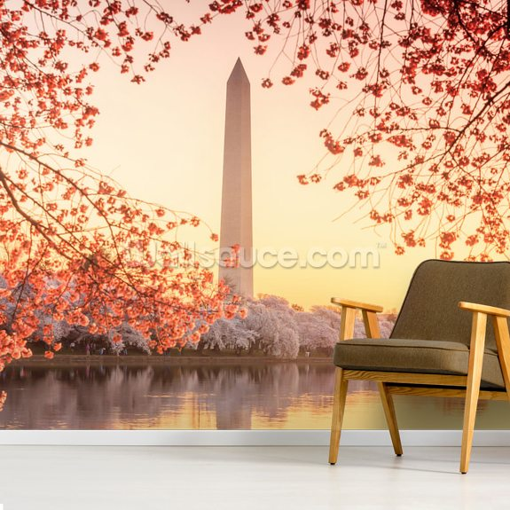 The Washington Monument And Cherry Blossom Wall Mural Room Setting