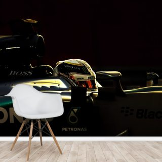 Lewis Hamilton Profile Wallpaper Wall Murals