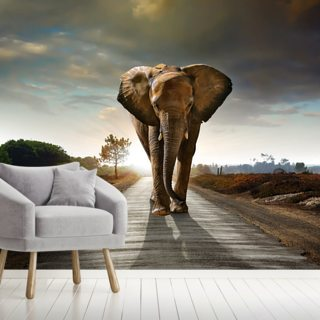 Walking Elephant Wallpaper Wall Murals