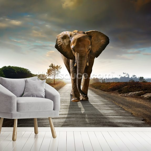 Walking Elephant wallpaper mural room setting