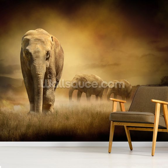 Sepia Elephants mural wallpaper room setting