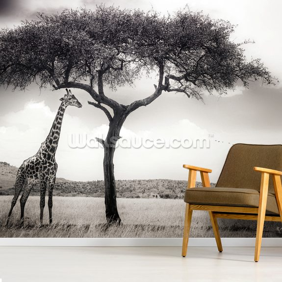 Under the African Sun wallpaper mural room setting