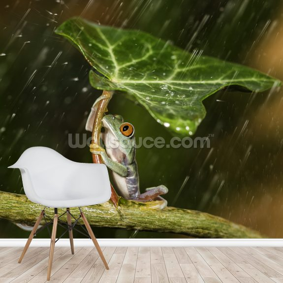 Improvisation Frog mural wallpaper room setting