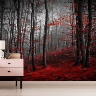 Bedroom Wallpaper & Wall Mural | Wallsauce US