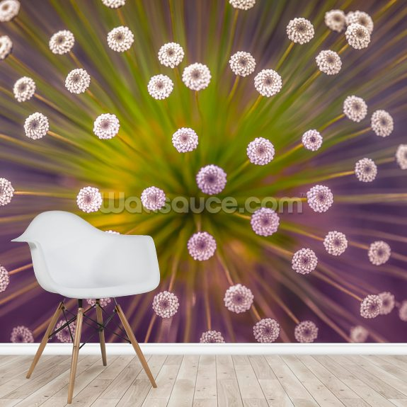 Colours mural wallpaper room setting