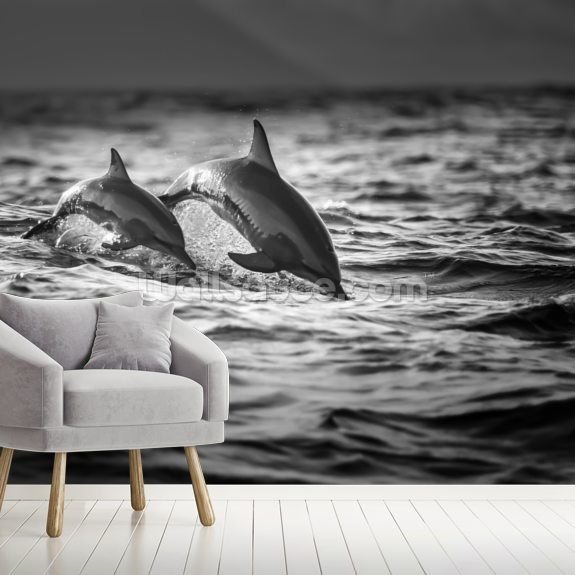 Dolphins wallpaper mural room setting