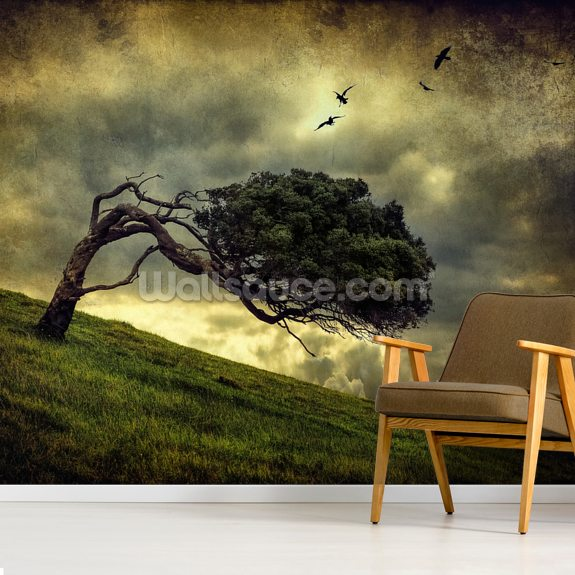 Winds of Change wallpaper mural room setting