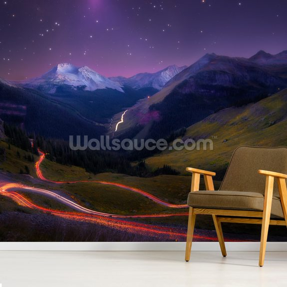 Ascendancy mural wallpaper room setting