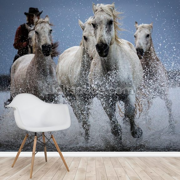 Cowboy Horses wall mural room setting